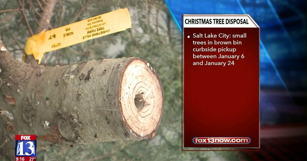Christmas Tree Pickup Sandy Utah 2020 Utah cities offer options for disposing of your Christmas tree