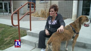 Utah dog 'Rhino Lightning' finds new home after note from child goesviral