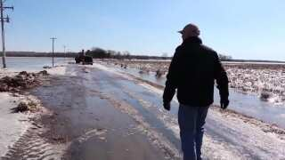 Montana Ag Network: State's cattle industry impacted by Nebraska floods