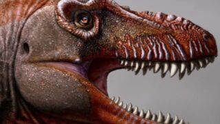 A Newly Discovered Cousin Of T. Rex Is Being Called The 'reaper Of Death'