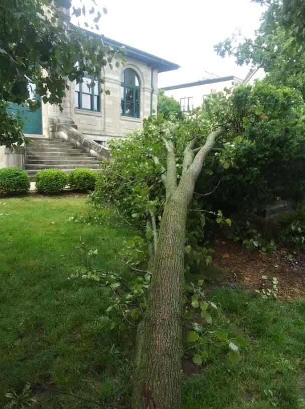 Bloomington Damage