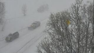 Aspen white out_Feb. 24, 2020