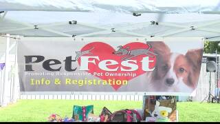 Largest pet adoption event in Montana moved online due to COVID-19