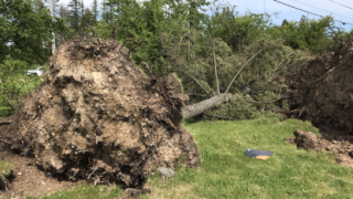 Whitefish resident sees good in community after powerful weekend storm