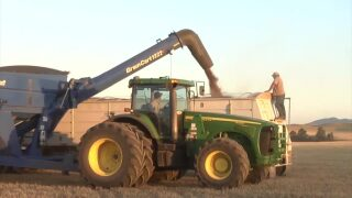 Montana Ag Network: Law aims to give MT farmers global market advantage