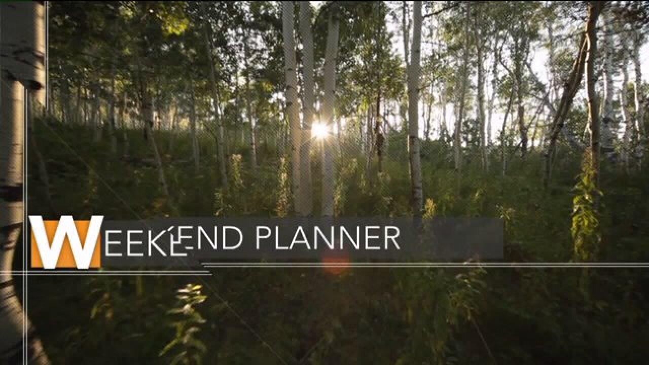 Weekend Planner: Hayes Tough 5K, Sugarhouse Shamrock Shuffle, SoulPose