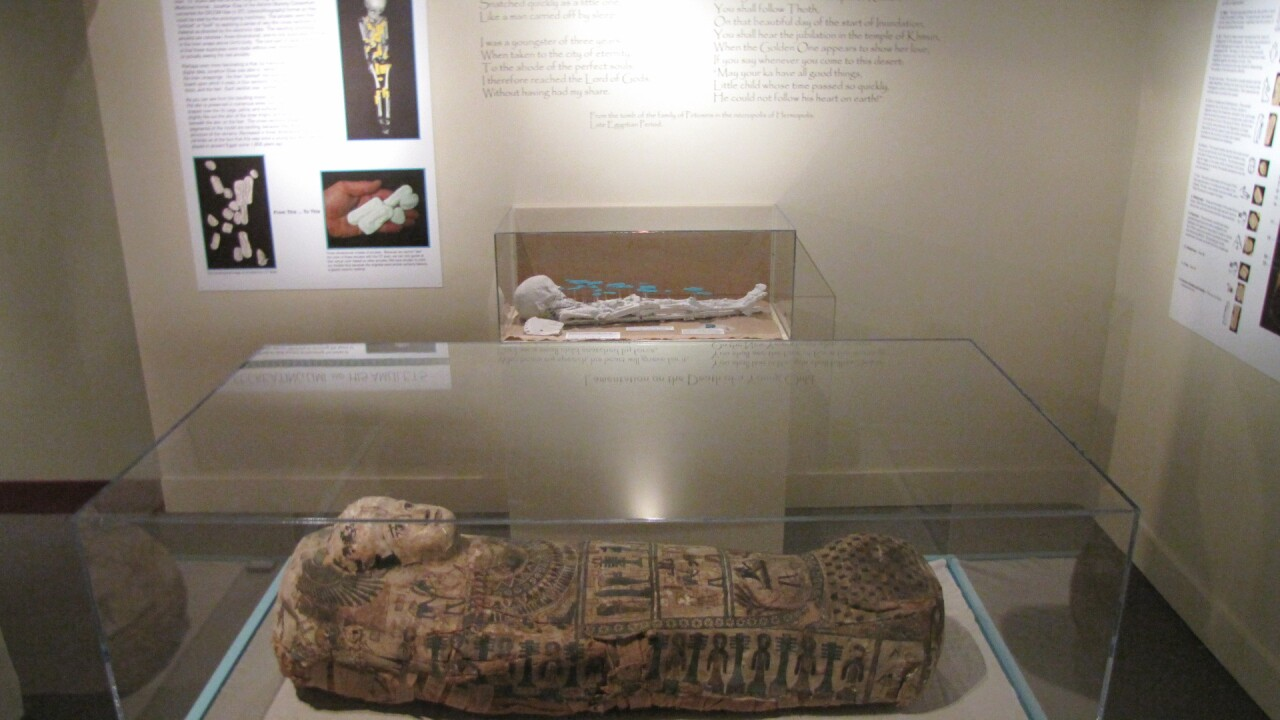 Child mummy Umi on display