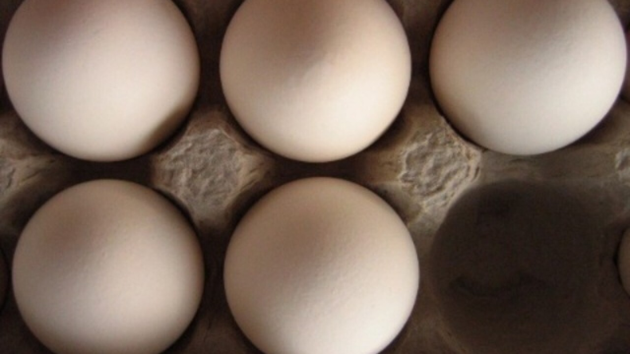 Indiana farm recalls more than 200 million eggs in 9 states over salmonella fears