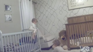 VIDEO: Two Tennessee brothers wanted to play so they staged a crib escape