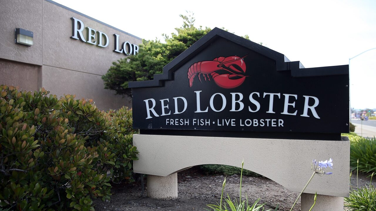You can get a $20 lobster at Red Lobster for National Lobster Day
