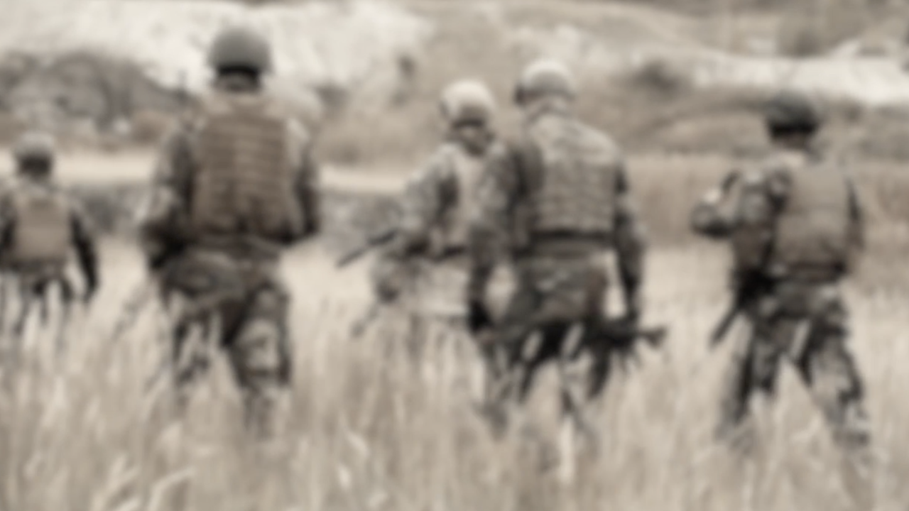 COVID-19 exacerbates PTSD in Vietnam veteran