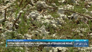 South Georgia farm loses $1.5 million after Hurricane Michael.png