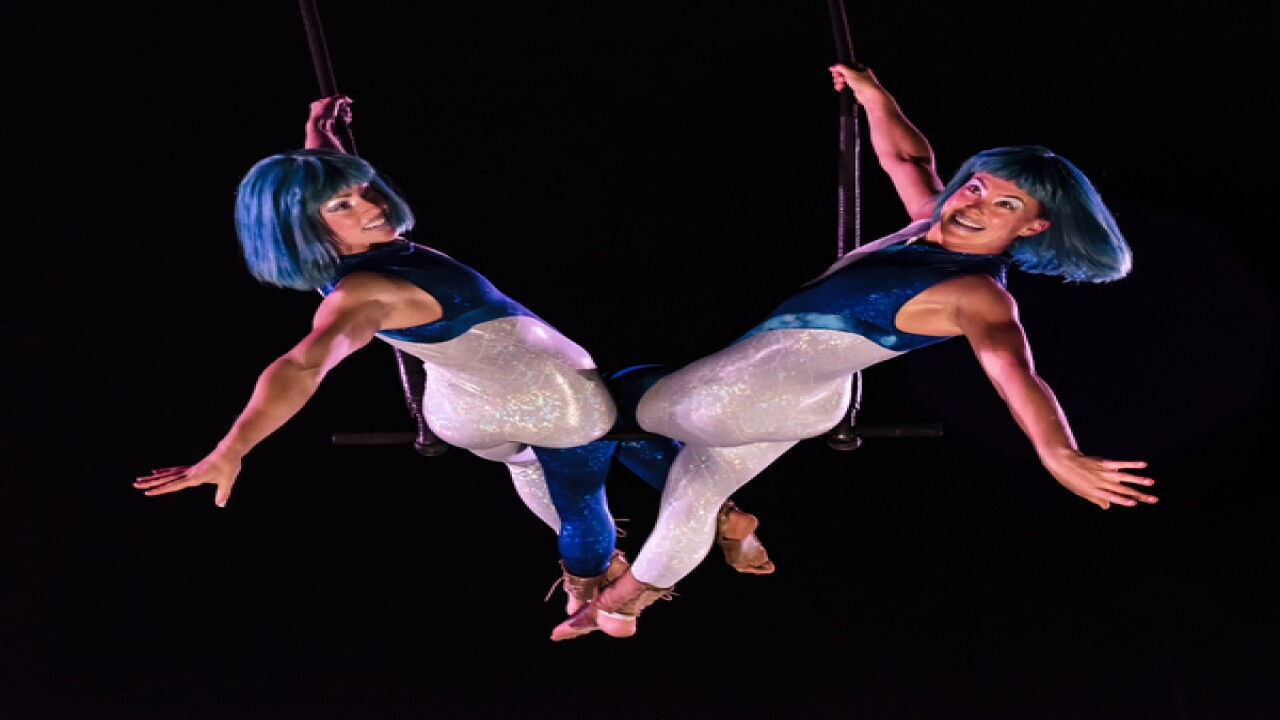 SeaWorld debuts Electric Ocean shows, club