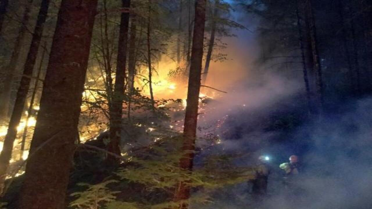 Active duty military personnel mobilized to help fight wildfires