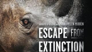 EFE_Artwork Rhino w laurels Med.jpg