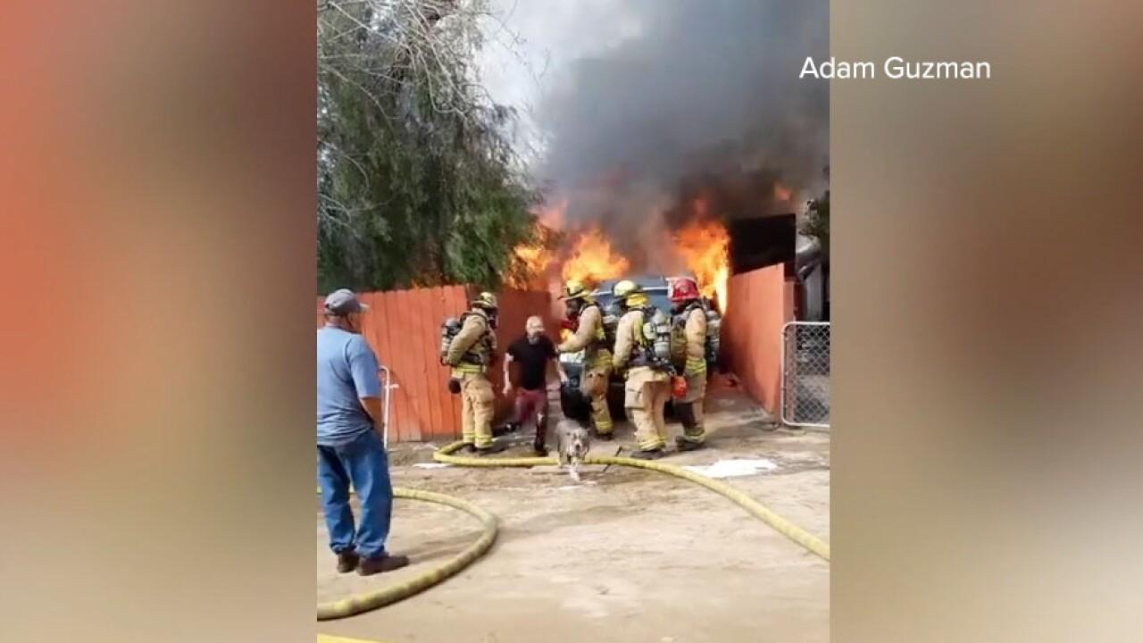 dog rescue pala man burning home.jpg