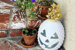 HomeGoods Is Selling Pineapple Jack-o-lanterns—and They're The Perfect Way To Shake Up Your Halloween Decorations