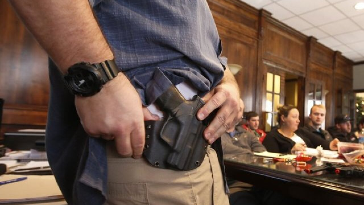 Concealed weapon permit review finds mistakes in Florida