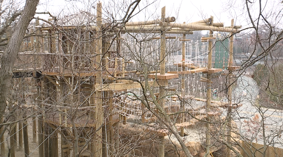 Kanga Klimb treehouse