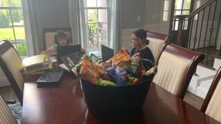 Virtual school at home