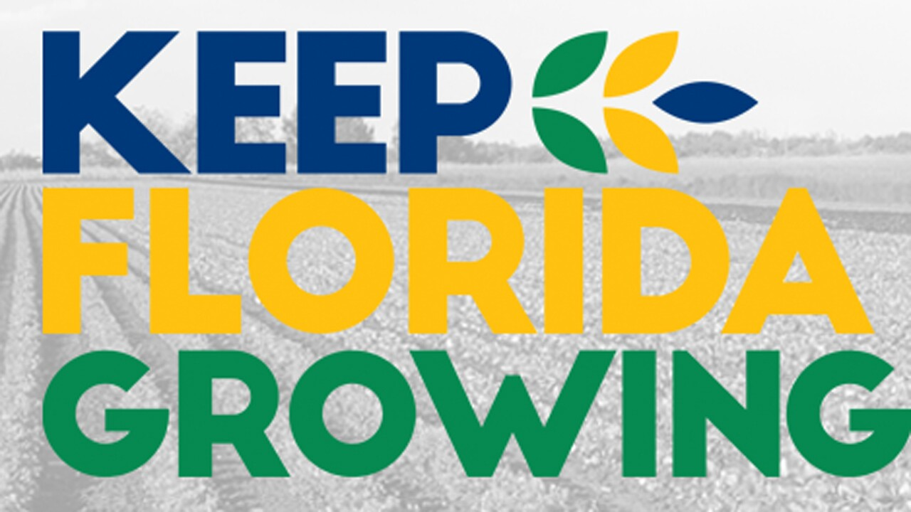 wptv-keep-florida-growing.jpg