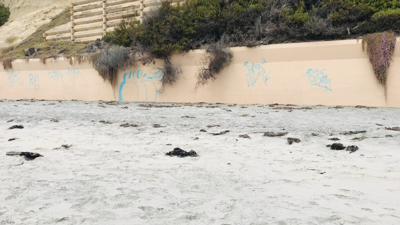 Solana Beach Graffiti.jpg
