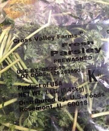 6.12 not so fresh parsley.JPG