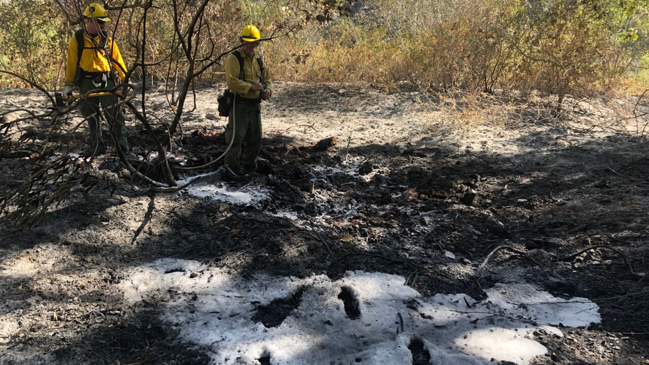 Crews on scene of the Lopez fire Sunday. (KSBY photo)