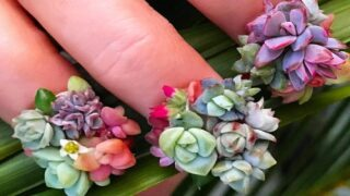 Nail Artist Does Manicures With Real Baby Succulents