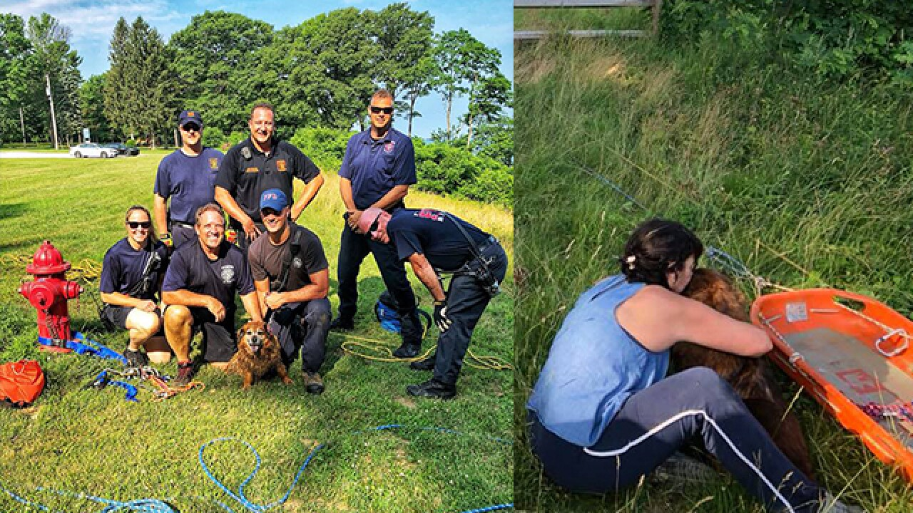 Dog named Karma rescued after falling over cliff