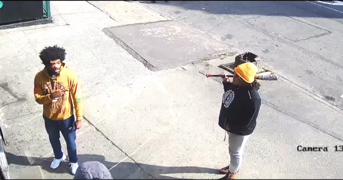 Pair with bat attack man in the Bronx