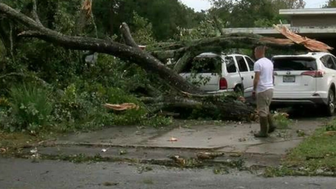 Large storm brings damage to Tampa Bay