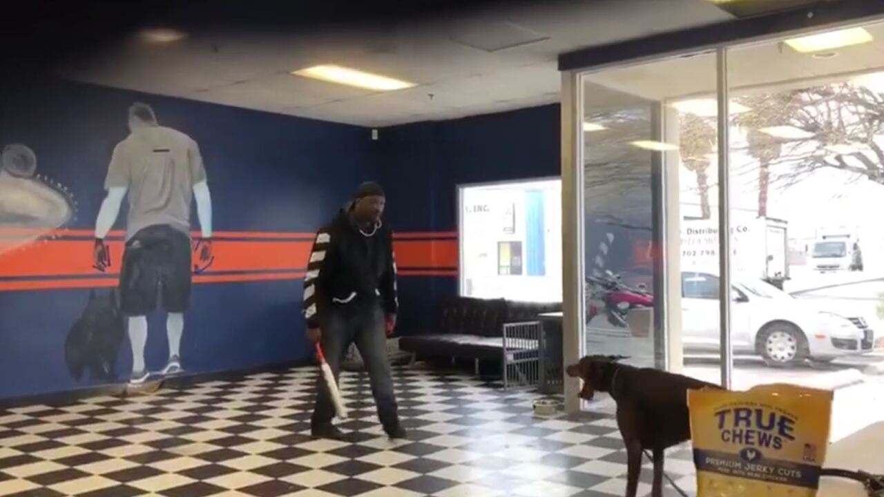 Las Vegas dog trainer has licensed removed after disturbing 'baseball bat' video