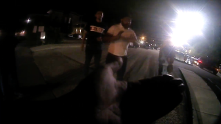KDPS body cam video depicts 'border' comment