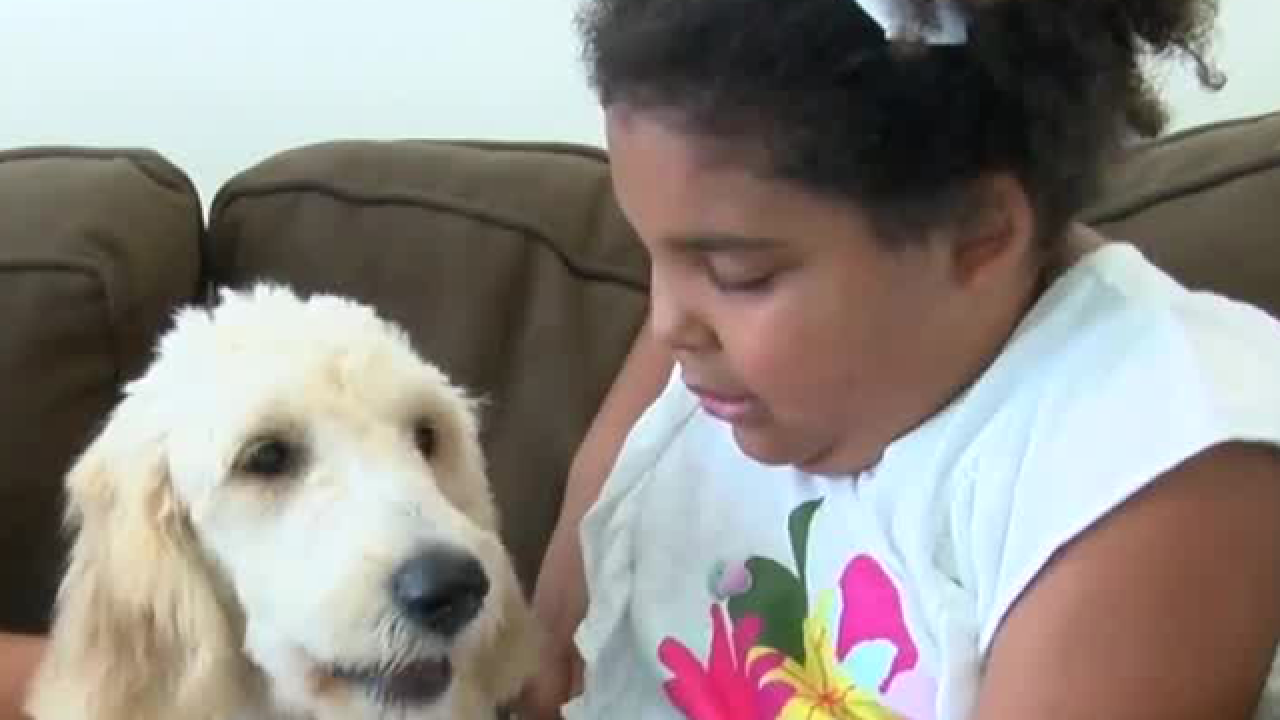 Young girl meets her soon to be service dog for the first time