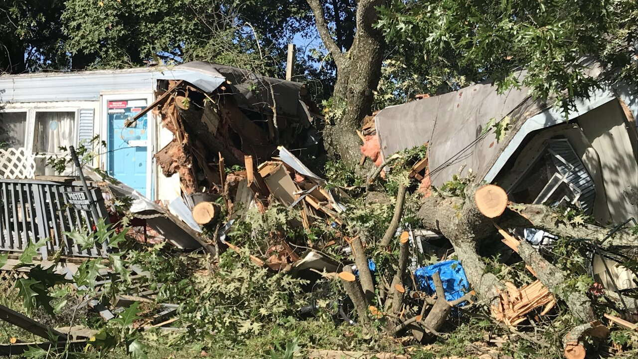 Home sliced in half as tree crashes through Virginia Beach mobile home