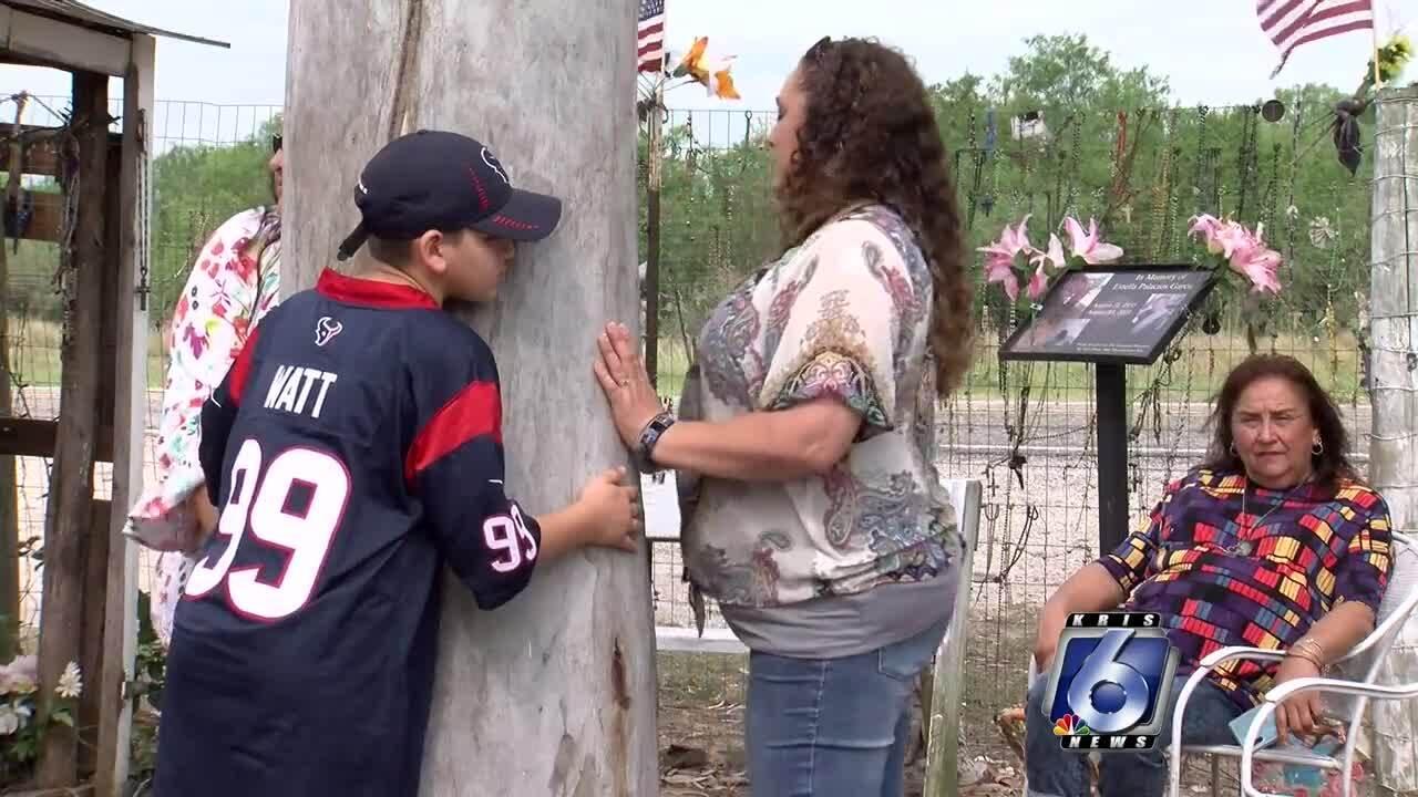 Duval County healing tree