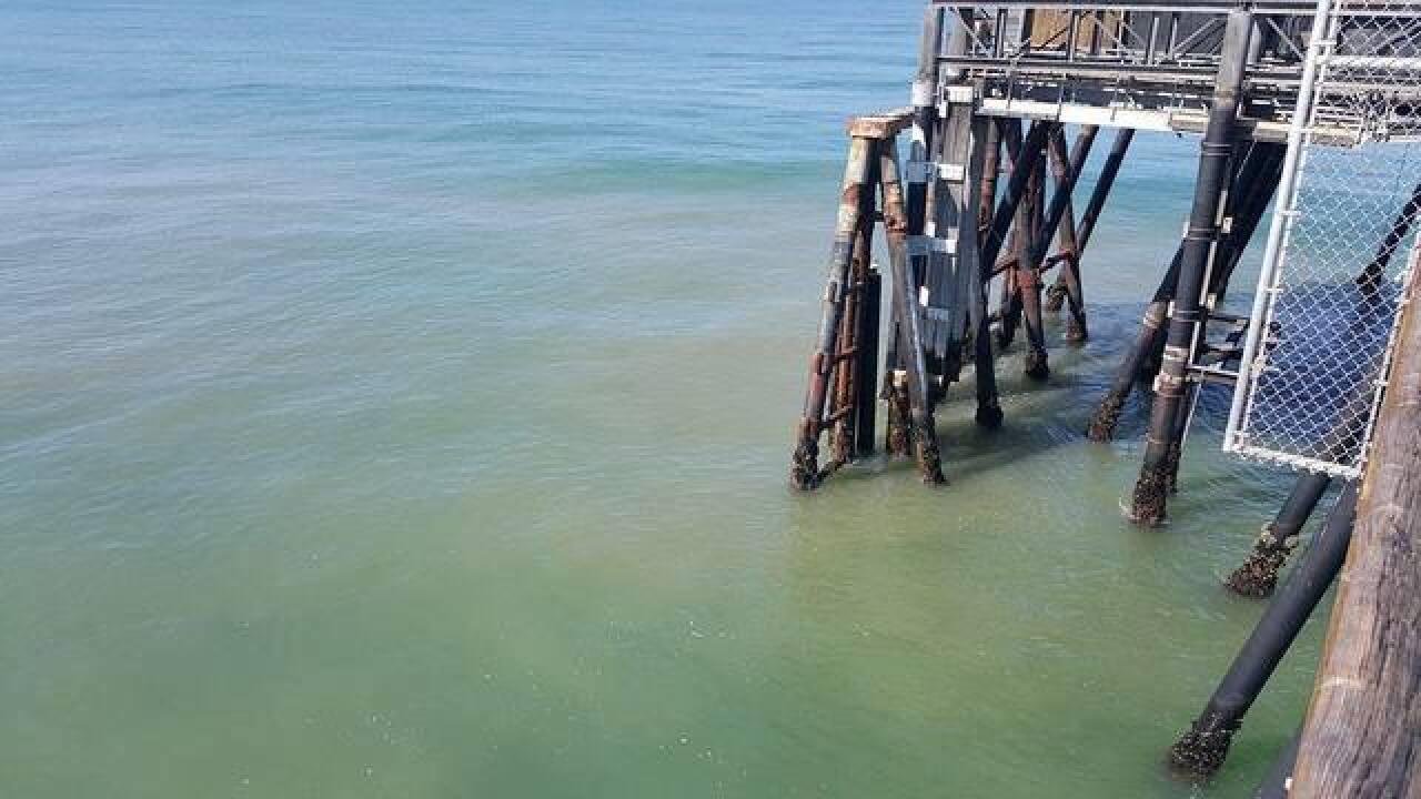 New sewage runoff concerns closes IB shoreline