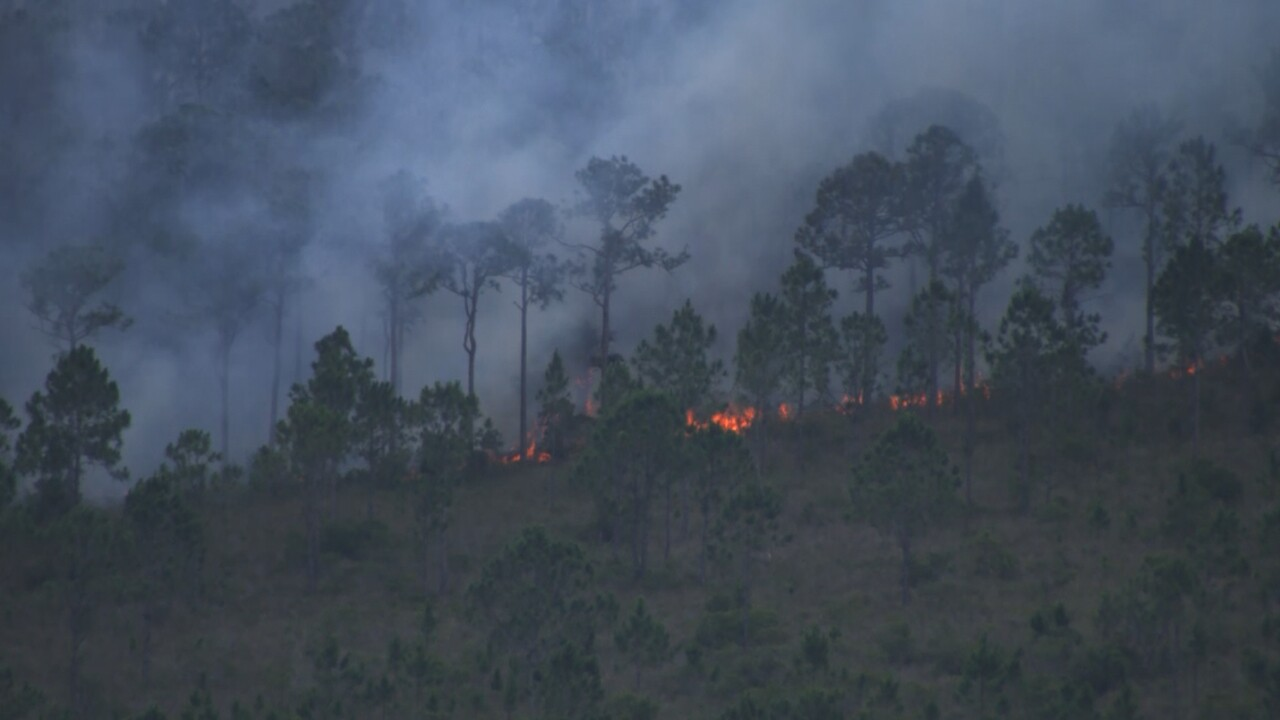 A brush fire burns near the Indian River-Brevard County line on May 21, 2021.jpg