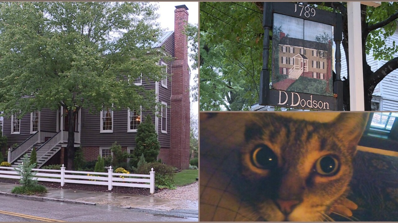 Is historic Petersburg tavern haunted? A cat seems to think so.