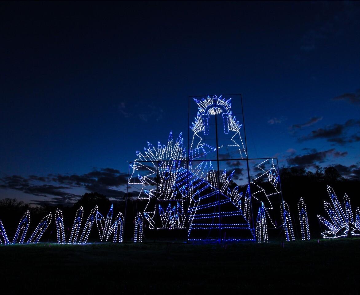 holiday light show credit BOLD MEDIA 3.jpeg