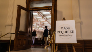Texas House mask.PNG