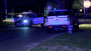 fatal hit-and-run St. Petersburg 34th Avenue S