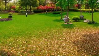 "Menards Home Improvement: ""Winterize Your Lawn"""