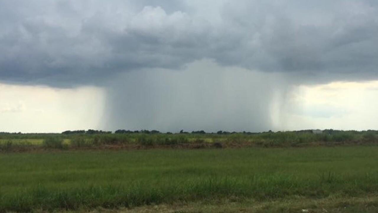 Tropical Shower 2.jpg