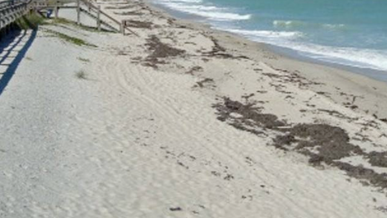 All Indian River County beaches open, except one