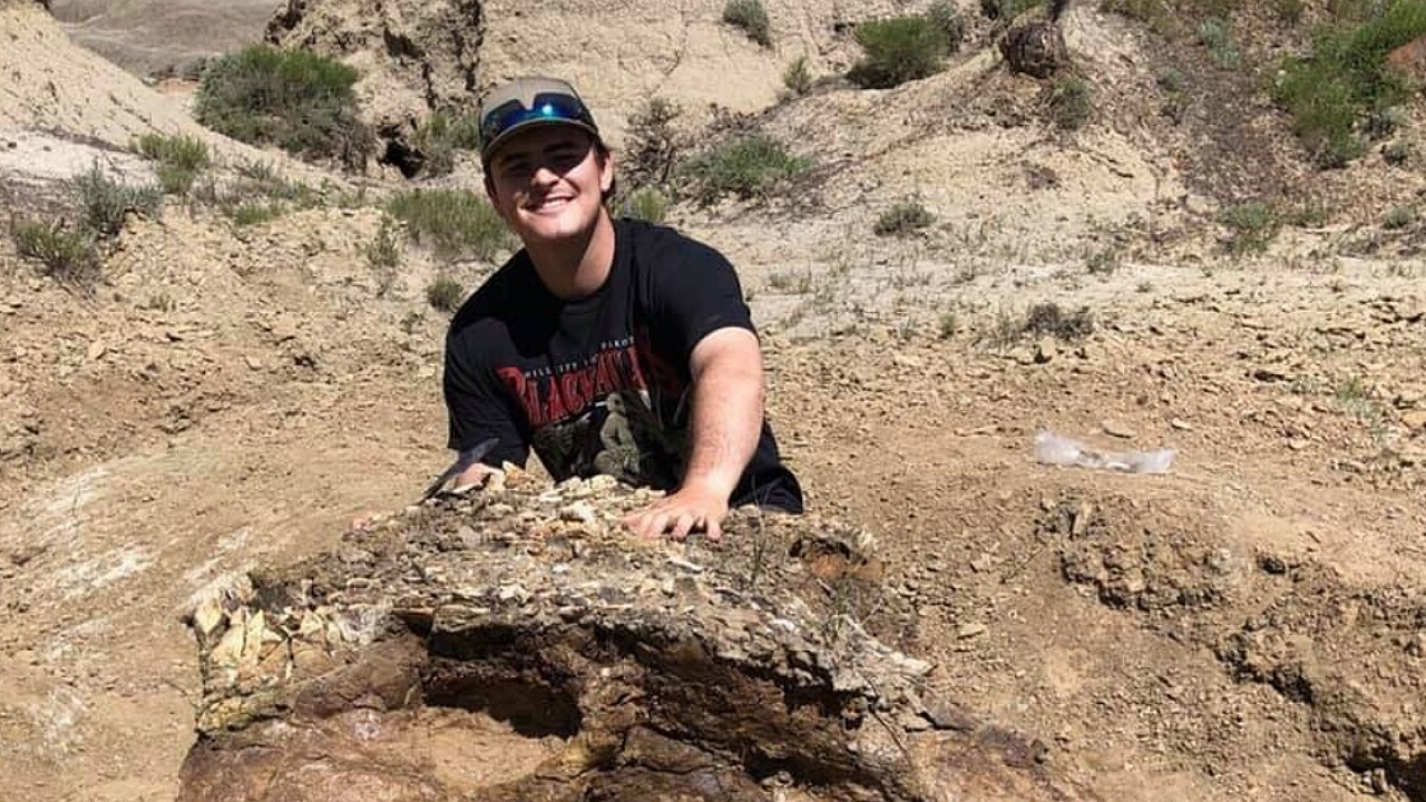 College student unearths 65 million-year-old Triceratops skull