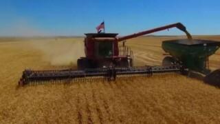 Farm Bill delays create uncertainty for Montana ag community