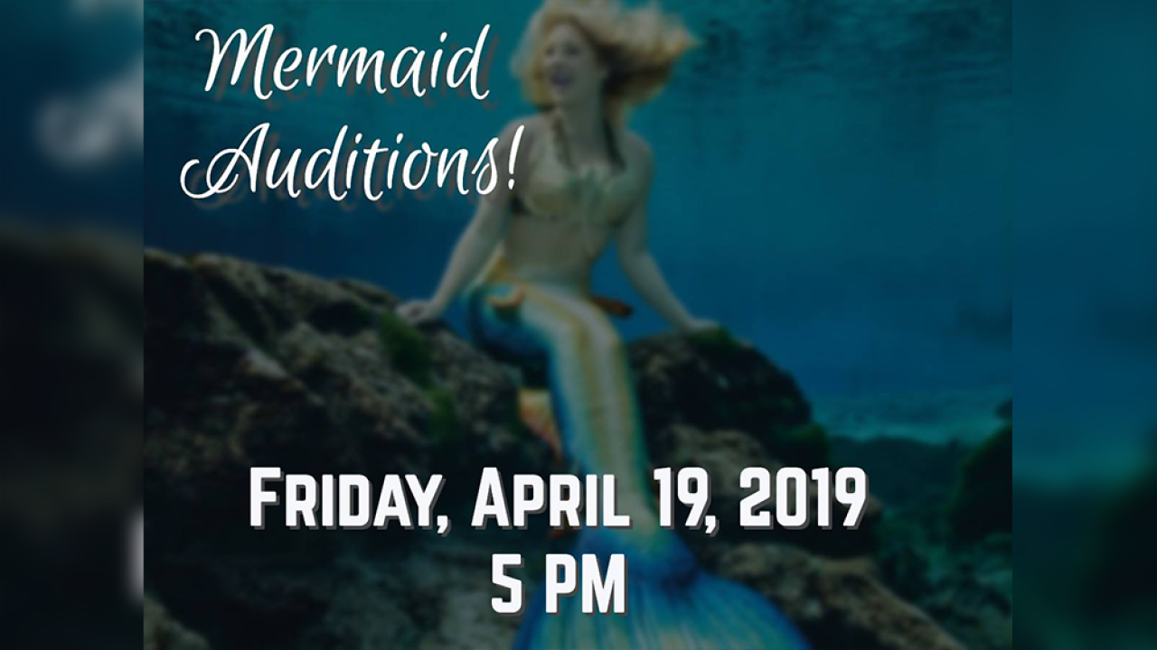 Mermaids Wanted! Weeki Wachee Springs holding auditions to become part of their world