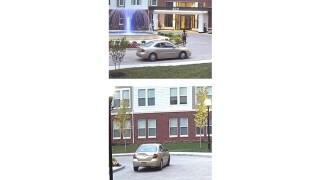 vehicle 1.jpg